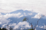 Pichincha Volcano View
