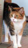 Maisie!  What a Doll!