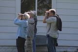 Warbler Day 2011