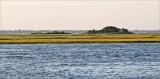 Captree marsh