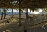 shady hammocks
