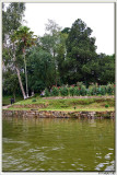 Wards Lake