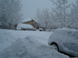 from Tracy's house in Flagstaff, January 7, 2008