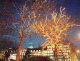 Finsbury  Square  Christmas  Lights