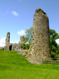 Narberth  Castle  ruins / 2