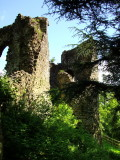 Narberth  Castle  ruins / 3