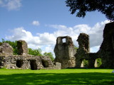 Narberth  Castle  ruins / 4