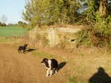 Another  WW2  pillbox ,beside  Cobbins  Brook.