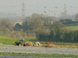 Rural  Kent.