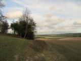 The  Wealdway  on  Rid  Ridge.