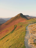 Catbells  from  Skelgill  Bank.