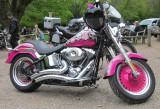 Harley - Davidson  customised.