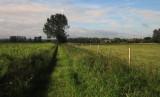 Wealdway  approaching  Kent  House  Farm