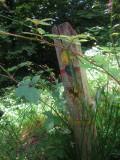 Wealdway  marker  post.