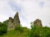 Wigmore  castle  ruins  /  3
