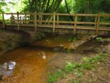 Footbridge  in  Furnace  Wood