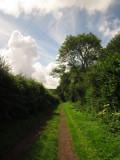 Lane  near  Hendall  Manor.
