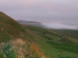 Morning  mist  creeps  across  Steel  Rigg.