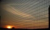 Sunrise  through  safety  glass.