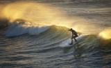OB Surf  2388