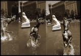 perro delfín