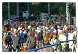 Audience For Richard Thompson