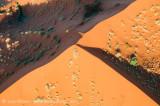 Dune faces