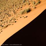 Dune faces2