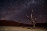 Deadvlei tree & Milkyway