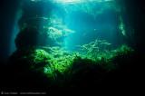 Eden Cenote 2