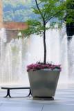 Cool Water Fountain