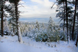 View of Flathead Lake From Snow Shoeing