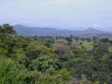 Central America 2005