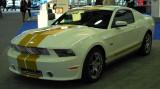MustangShelbyGTS.jpg