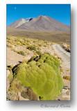Planète Mars? non , Bolivie