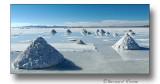 Salar d'Uyuni-récolte de sel