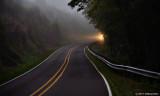 A Light In The Fog