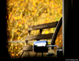 A Peek at A Pickup of Fall Colors