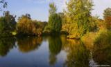 Pond In Alton Baker Park