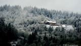 A Mini Snowstorm