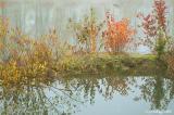 At Delta Ponds