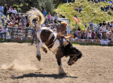 Rodeo!
