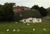 Avebury Farm.jpg