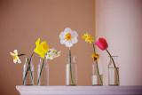 quelque_fleurs