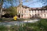 Beelitz Heilstatten, abandoned...