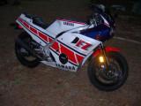 #5 1986 FZ600
