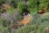 Queen Creek is Muddy after a Rain
