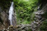 Deep in a stream