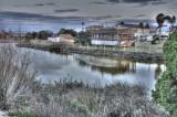 Alviso Baylands