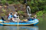 river dogs  w/ falls